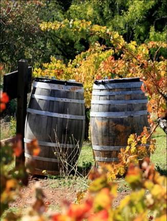 Re-Purposing Wine Barrels